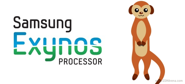 Exynos Mongoose