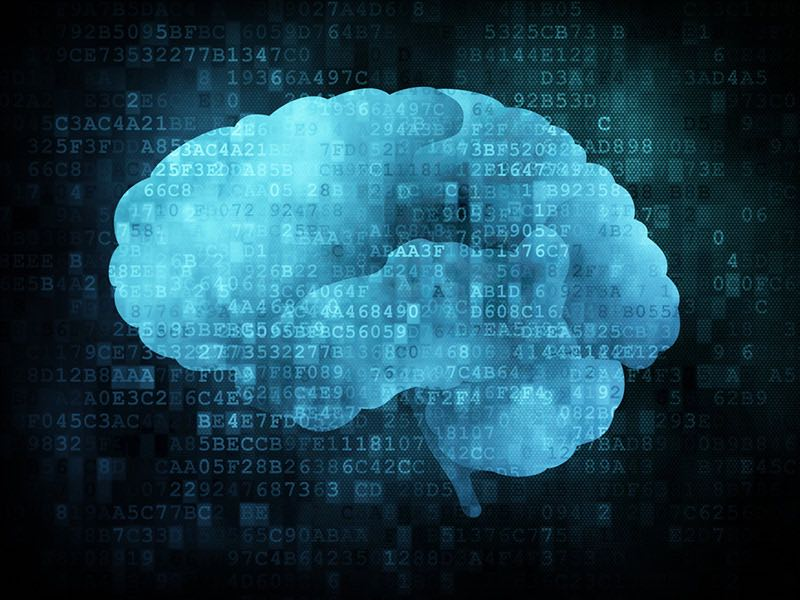 WEB-brain-computer
